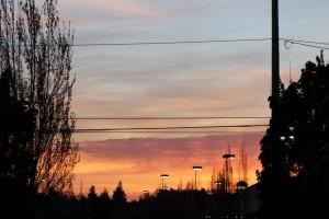 Nice outdoor evening shot